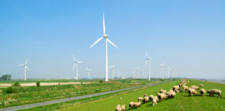 People in rural areas feel the CO2 price already, now we have to help them adapt - Saathoff (SPD)